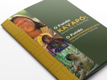 Fundo Kayapó – Funbio